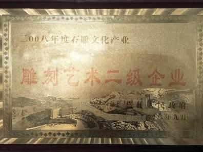 荣誉证书(五)